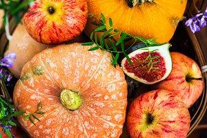 Autumnal colorful  pumpkins, apples
