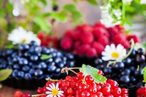 Fresh ripe summer berries - red curr