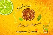 Hand Drawn Citrus Set