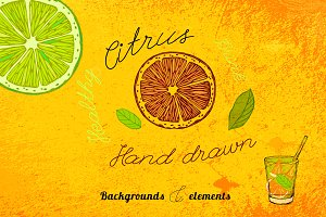 Hand Drawn Citrus Set