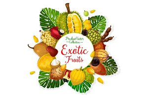 Exotic tropical fruits and berries