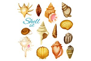 Cartoon seashell and sea mollusk