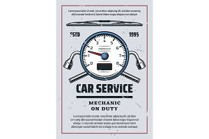 Car service and mechanic diagnostics