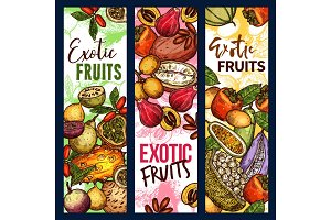 Exotic tropical fruits sketch