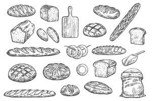 Bread loafs, buns and baguettes