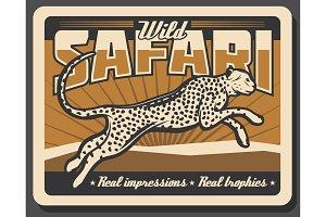 Safari cheetah or leopard hunting