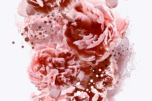 pattern with peonies | JPEG