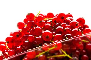 red currant berries on a white backg