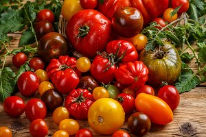 Various organic tomatoes