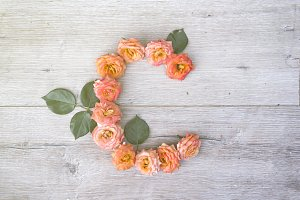C, roses flower alphabet isolated on