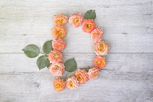 D, roses flower alphabet isolated on