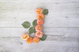 J, roses flower alphabet isolated on