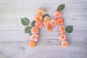 M, roses flower alphabet isolated on