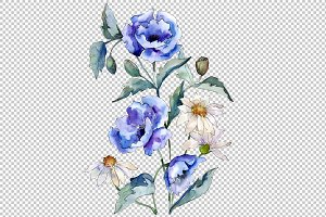 Bouquet with blue poppy and daisy
