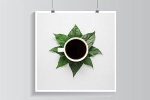 Coffee leaves.