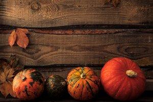 autumn fall holidays. harvest time