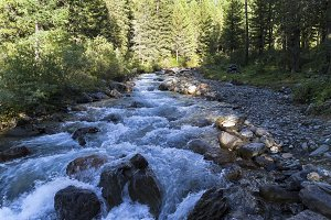 A small river in the Altai Mountains