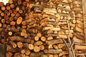 log of chopped firewood