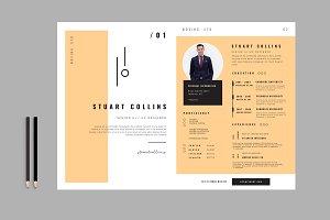 Clean CV -  Resume