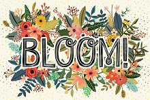 Bloom! Flower Collection