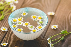 Organic daisy tea with fresh flowers