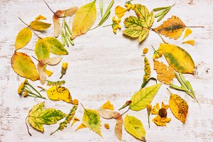 Frame of yellow leaves on a wooden b
