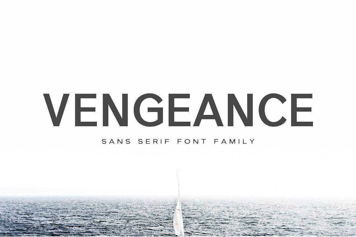 Vengeance Sans Serif Font Family ~ Sans Serif Fonts ~ Creative Market