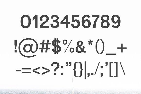 Vengeance Sans Serif Font Family