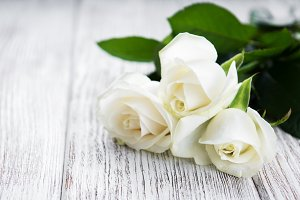 White roses on a table