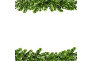 Christmas background with green Pine