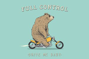 bear is riding on motorcycle
