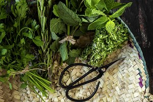 Aromatic herbs. Flat lay
