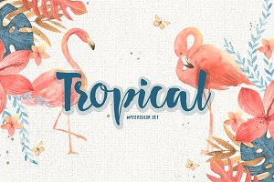 Tropical set. Flamingo