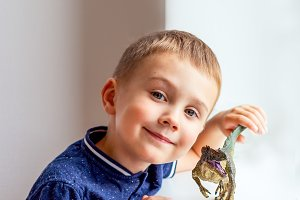 Boy playing with dinosaur figurine