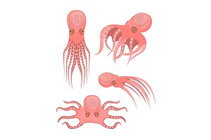 Cartoon Octopus Characters  Set.
