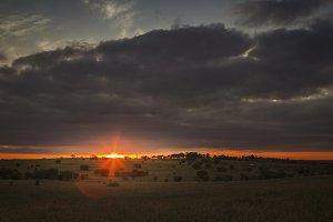 Sunset Over an Open Field