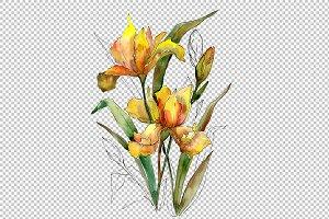 Bouquet of yellow irises PNG set
