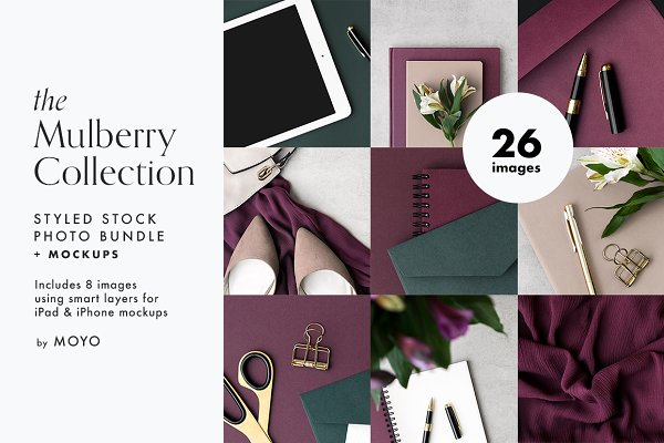 Graphics: Moyo Studio - The Mulberry Collection Photo Bundle