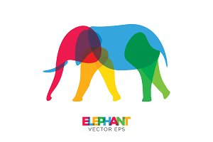 Creative Elephant Vector Animal