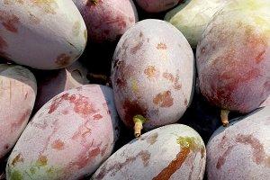 Fresh mango fruit at market