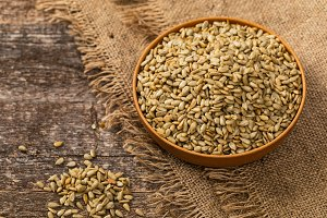 Roasted Sunflower Kernels Background