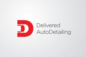 Delivered AutoDetailing | Vector Log