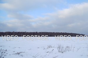 Winter landscape of fields and