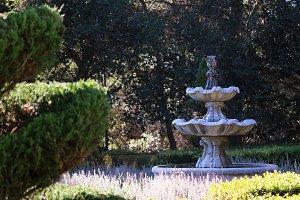 Elegant Fountain in A Garden