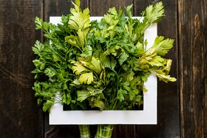fresh raw green parsley herb bunch w