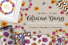 African daisy PNG watercolor set