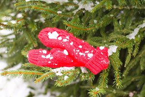 Red mittens in winter park