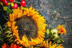 Autumn sunflowers composition