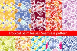 Tropical palm leaves.