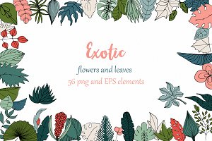 Exotic and Tropical leaves